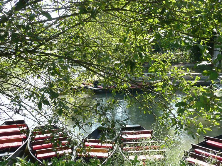 Barques sur la venise verte