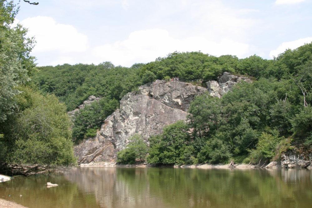 La forêt de Mervent-Vouvant